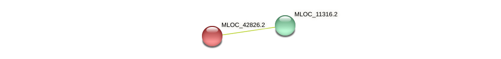 MLOC_42826.1 protein (Hordeum vulgare) - STRING interaction network