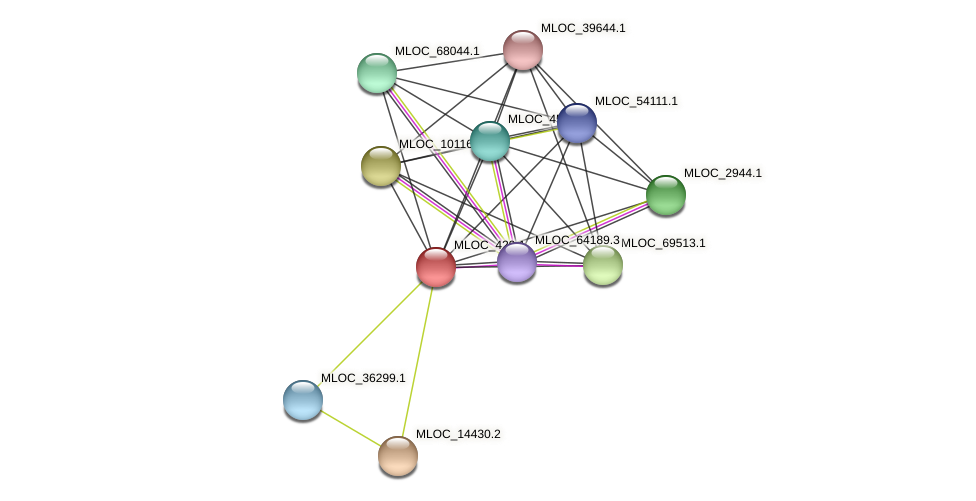 MLOC_429.1 protein (Hordeum vulgare) - STRING interaction network