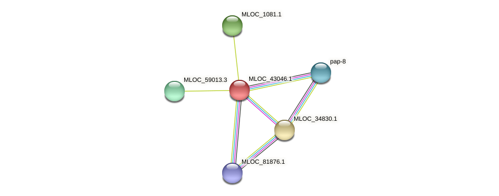 MLOC_43046.1 protein (Hordeum vulgare) - STRING interaction network
