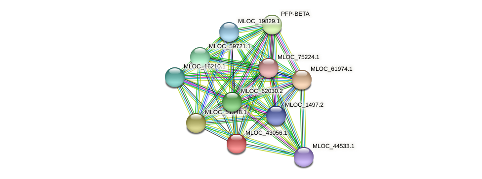 MLOC_43056.1 protein (Hordeum vulgare) - STRING interaction network