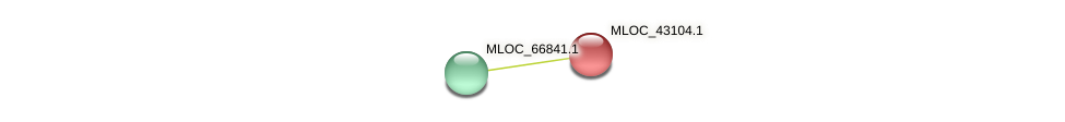 MLOC_43104.1 protein (Hordeum vulgare) - STRING interaction network