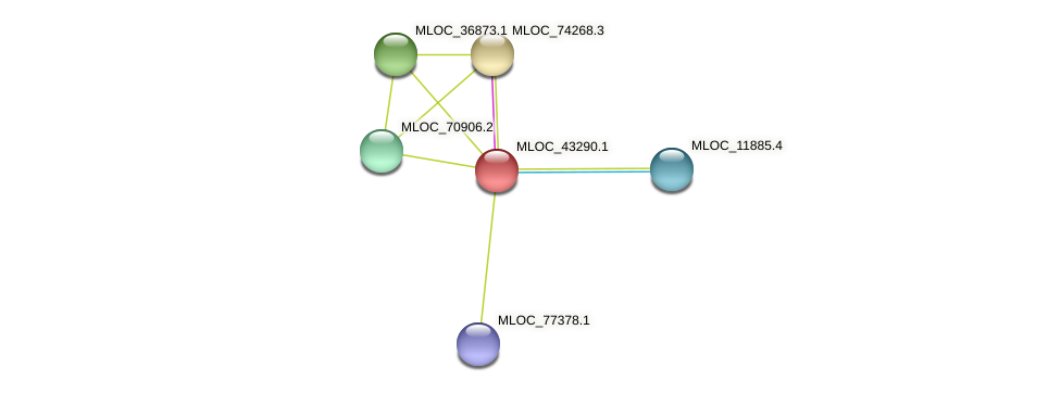 MLOC_43290.1 protein (Hordeum vulgare) - STRING interaction network