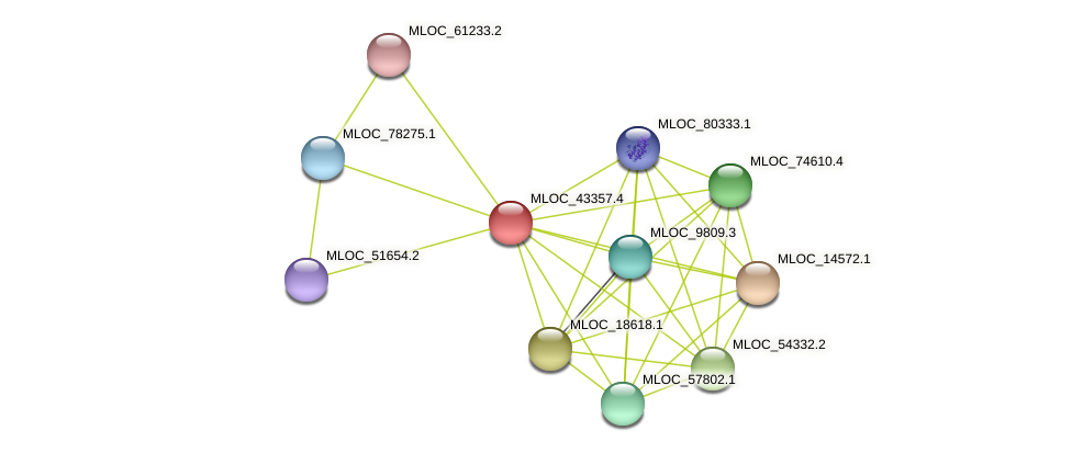 MLOC_43357.4 protein (Hordeum vulgare) - STRING interaction network