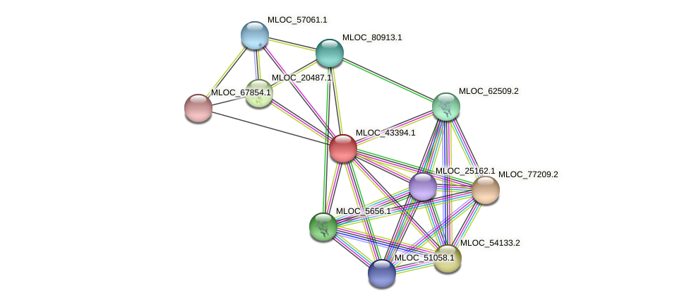 MLOC_43394.1 protein (Hordeum vulgare) - STRING interaction network