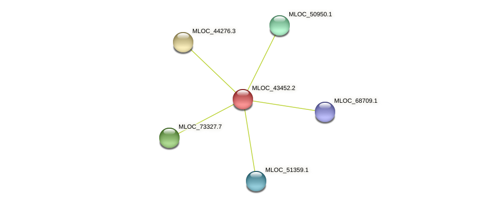 MLOC_43452.2 protein (Hordeum vulgare) - STRING interaction network