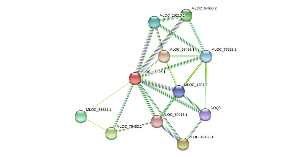 MLOC_43498.1 protein (Hordeum vulgare) - STRING interaction network