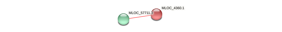MLOC_4360.1 protein (Hordeum vulgare) - STRING interaction network