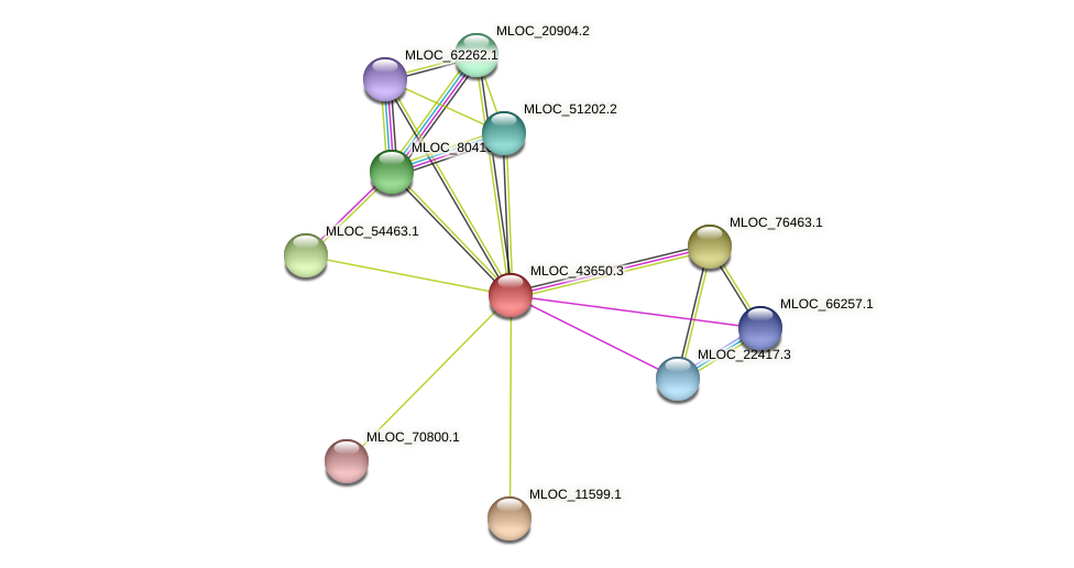MLOC_43650.3 protein (Hordeum vulgare) - STRING interaction network