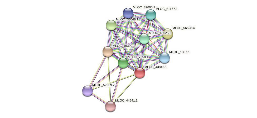 MLOC_43846.1 protein (Hordeum vulgare) - STRING interaction network