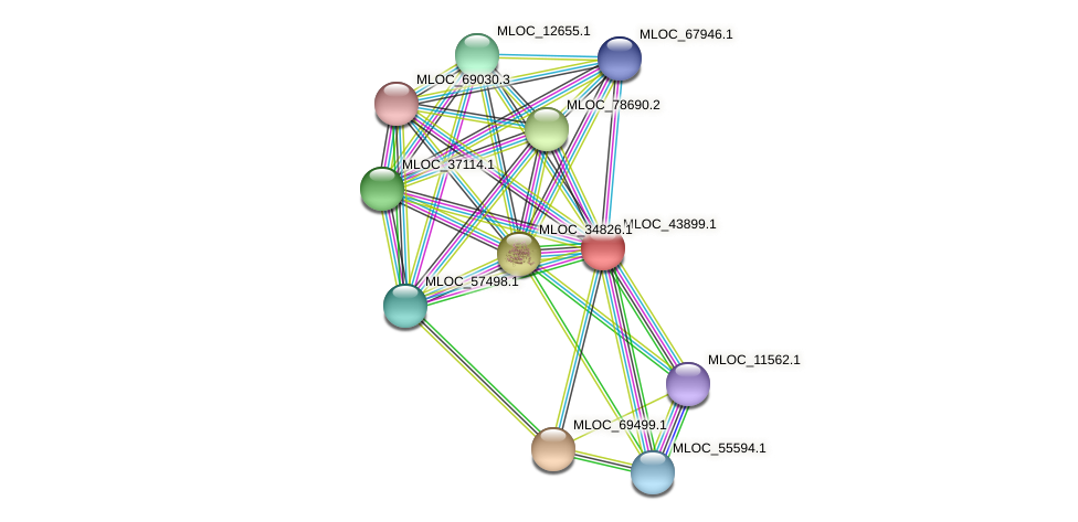 MLOC_43899.1 protein (Hordeum vulgare) - STRING interaction network