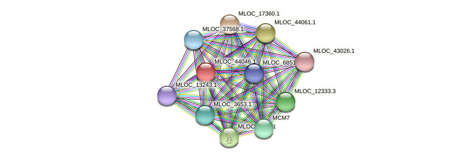 MLOC_44046.1 protein (Hordeum vulgare) - STRING interaction network