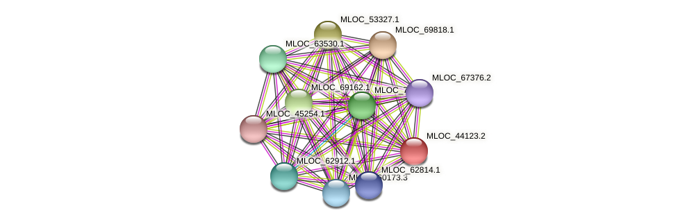 MLOC_44123.2 protein (Hordeum vulgare) - STRING interaction network