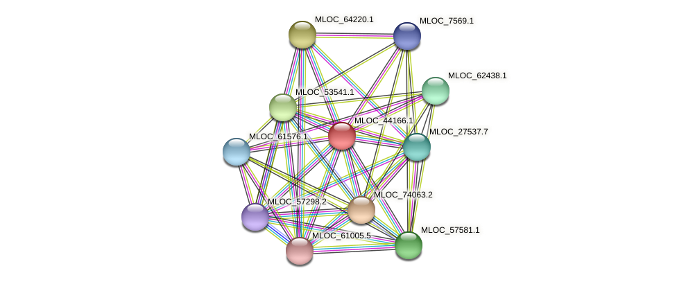 MLOC_44166.1 protein (Hordeum vulgare) - STRING interaction network
