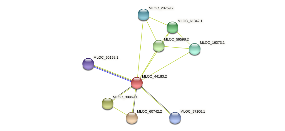 MLOC_44183.2 protein (Hordeum vulgare) - STRING interaction network
