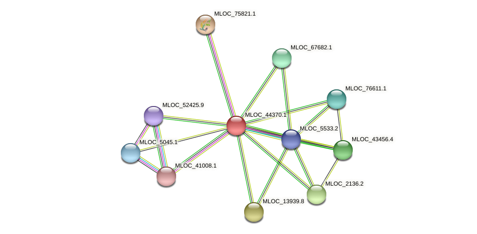 MLOC_44370.1 protein (Hordeum vulgare) - STRING interaction network