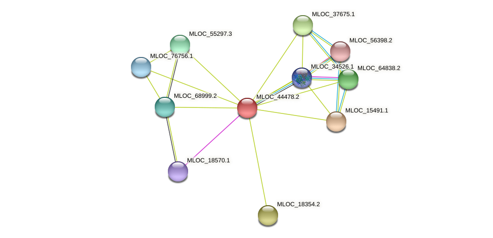MLOC_44478.2 protein (Hordeum vulgare) - STRING interaction network