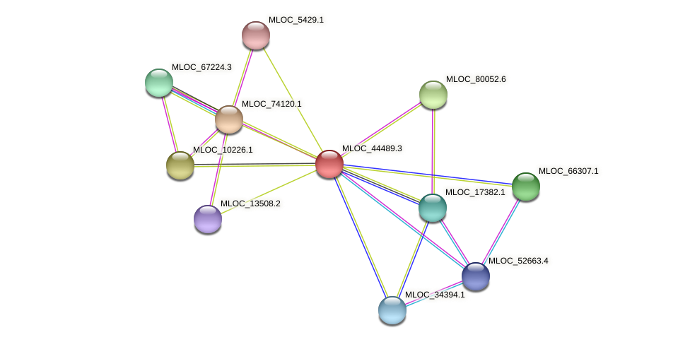 MLOC_44489.3 protein (Hordeum vulgare) - STRING interaction network