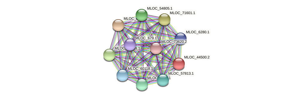MLOC_44500.2 protein (Hordeum vulgare) - STRING interaction network