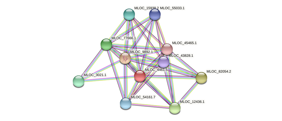 MLOC_4461.5 protein (Hordeum vulgare) - STRING interaction network