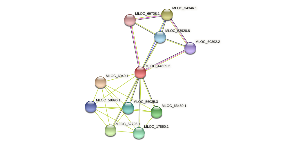 MLOC_44639.2 protein (Hordeum vulgare) - STRING interaction network