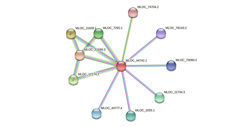 MLOC_44742.1 protein (Hordeum vulgare) - STRING interaction network