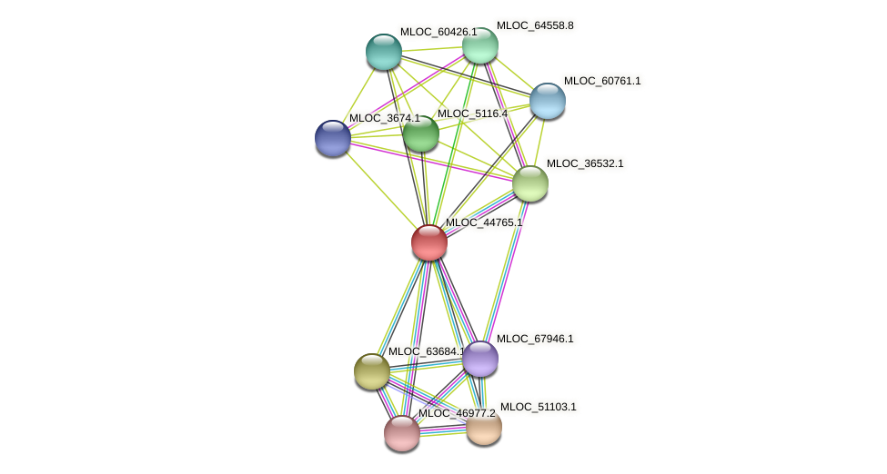 MLOC_44765.1 protein (Hordeum vulgare) - STRING interaction network