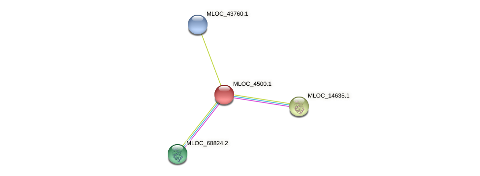 MLOC_4500.1 protein (Hordeum vulgare) - STRING interaction network