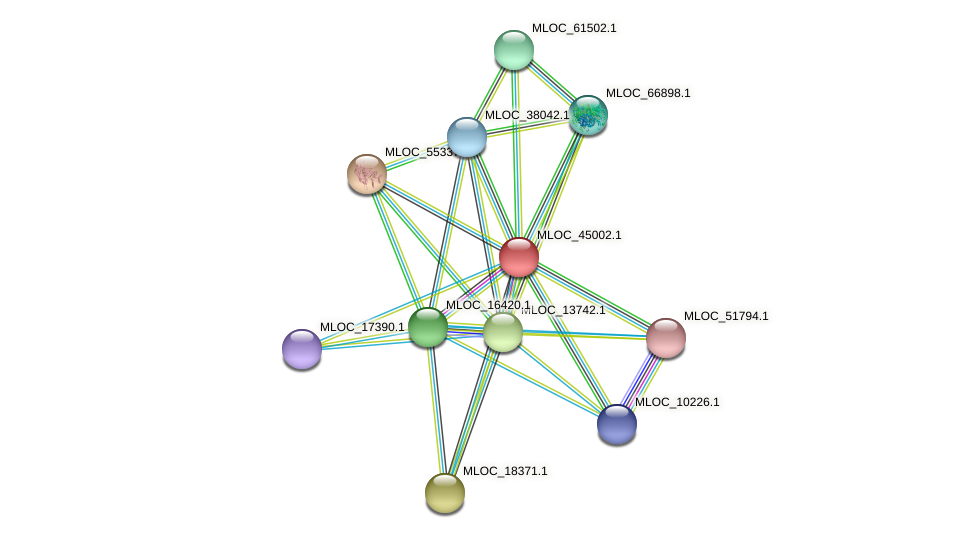 MLOC_45002.1 protein (Hordeum vulgare) - STRING interaction network