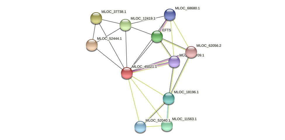 MLOC_45021.1 protein (Hordeum vulgare) - STRING interaction network