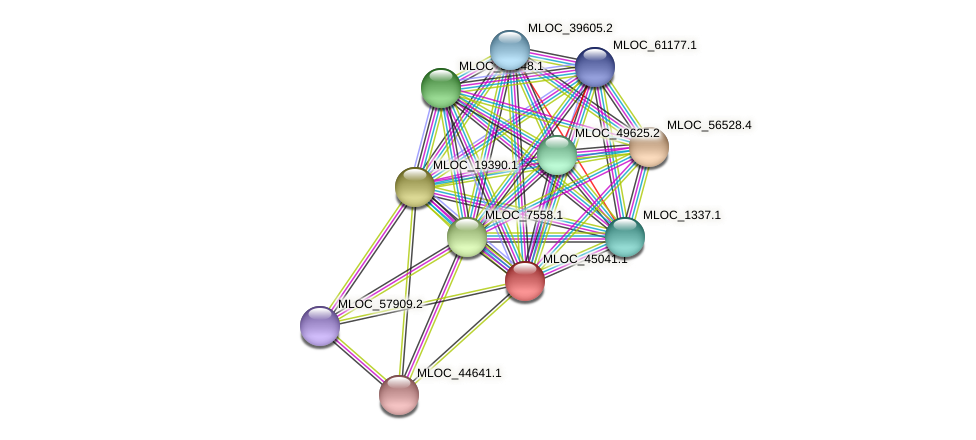 MLOC_45041.1 protein (Hordeum vulgare) - STRING interaction network