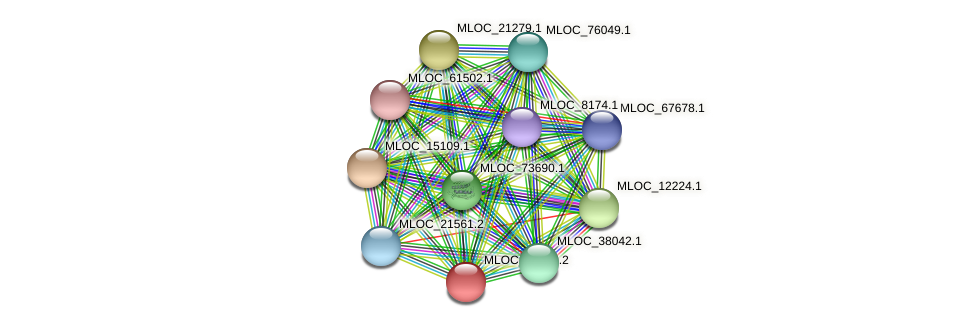 MLOC_45308.2 protein (Hordeum vulgare) - STRING interaction network