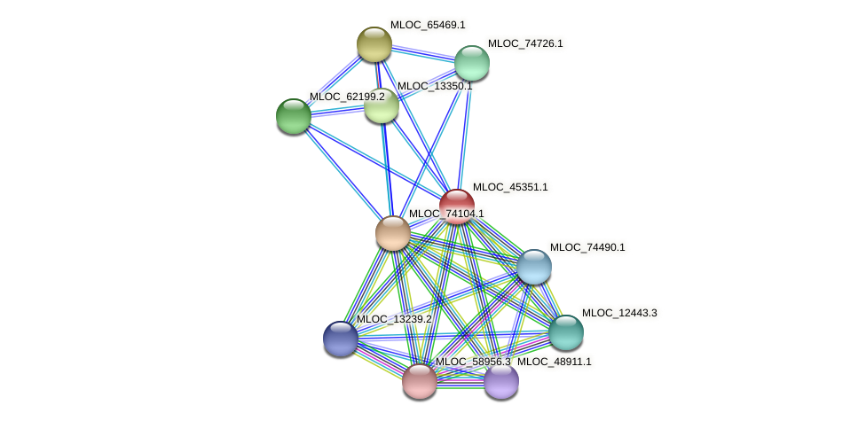 MLOC_45351.1 protein (Hordeum vulgare) - STRING interaction network
