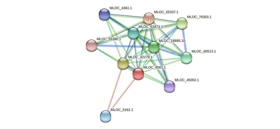 MLOC_4561.1 protein (Hordeum vulgare) - STRING interaction network