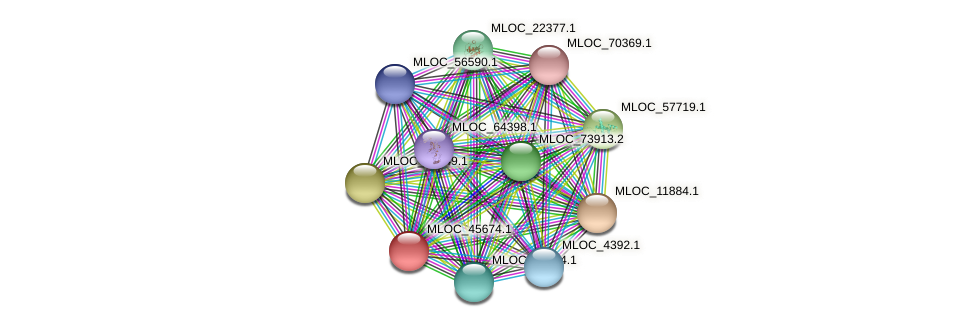 MLOC_45674.1 protein (Hordeum vulgare) - STRING interaction network
