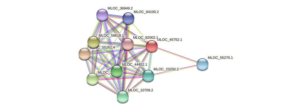 MLOC_45752.1 protein (Hordeum vulgare) - STRING interaction network