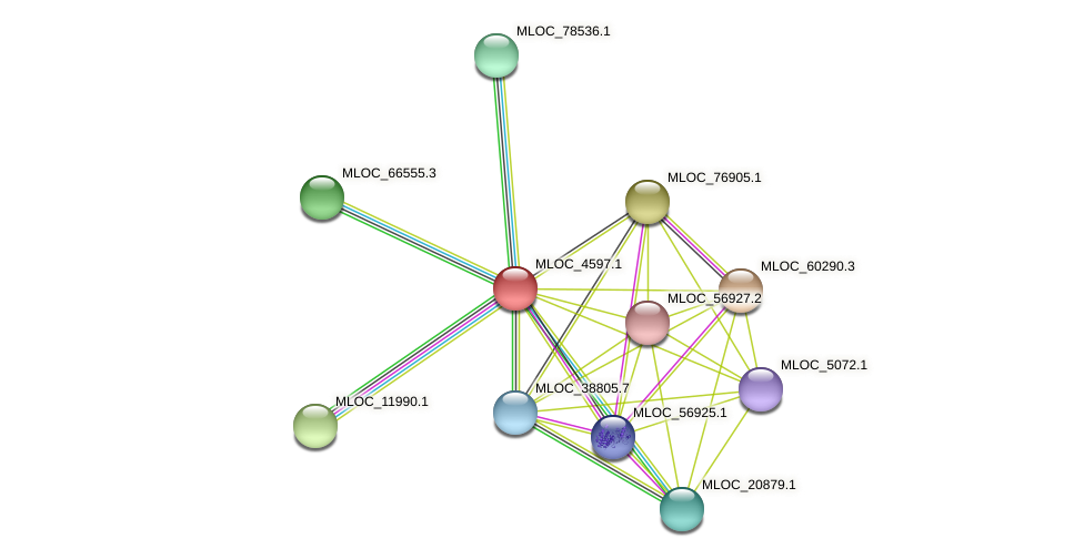 MLOC_4597.1 protein (Hordeum vulgare) - STRING interaction network