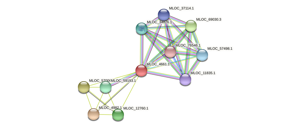 MLOC_4661.1 protein (Hordeum vulgare) - STRING interaction network