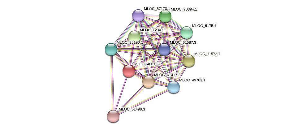 MLOC_46615.2 protein (Hordeum vulgare) - STRING interaction network