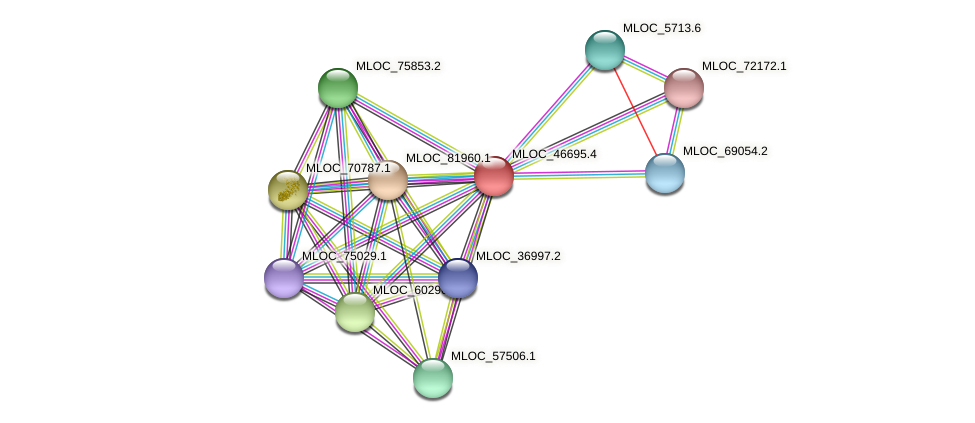 MLOC_46695.4 protein (Hordeum vulgare) - STRING interaction network