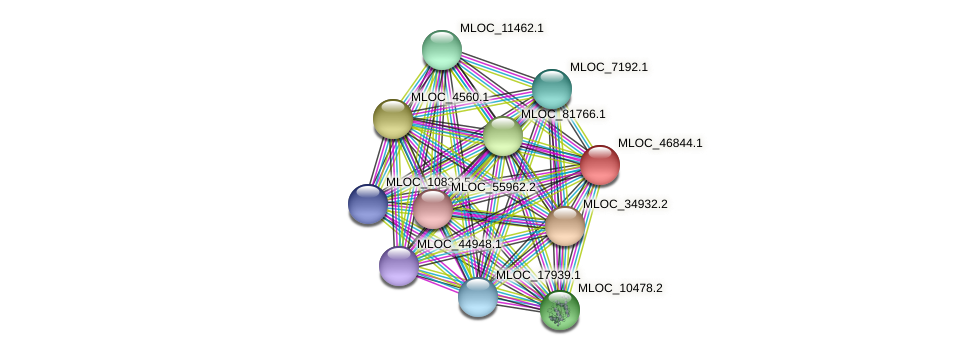 MLOC_46844.1 protein (Hordeum vulgare) - STRING interaction network