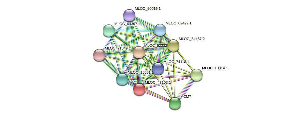 MLOC_47103.1 protein (Hordeum vulgare) - STRING interaction network