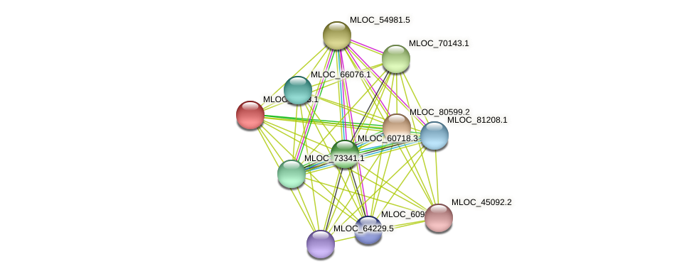 MLOC_4763.1 protein (Hordeum vulgare) - STRING interaction network
