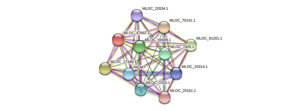 MLOC_47662.1 protein (Hordeum vulgare) - STRING interaction network