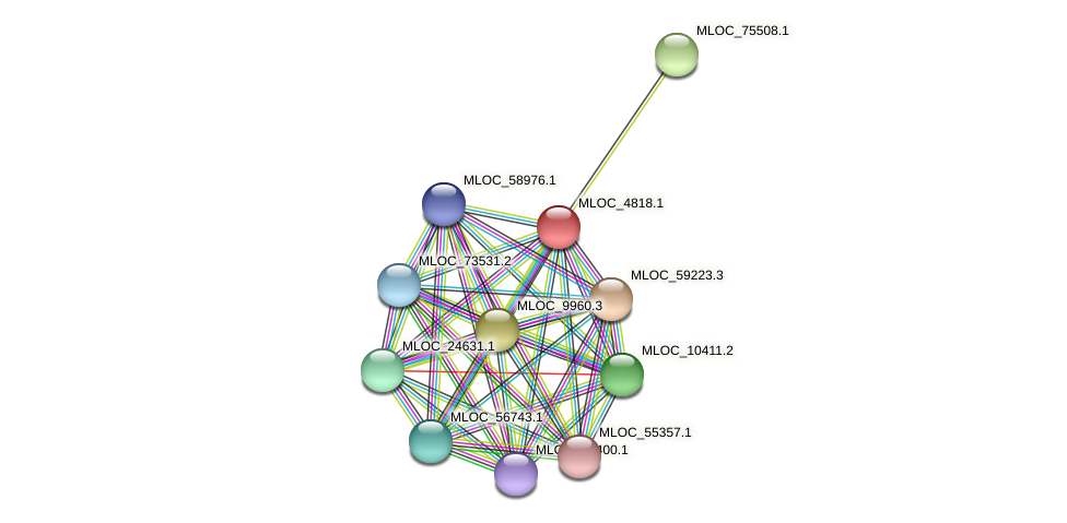 MLOC_4818.1 protein (Hordeum vulgare) - STRING interaction network