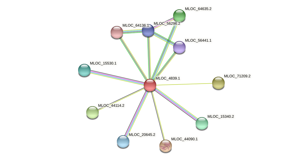 MLOC_4839.1 protein (Hordeum vulgare) - STRING interaction network