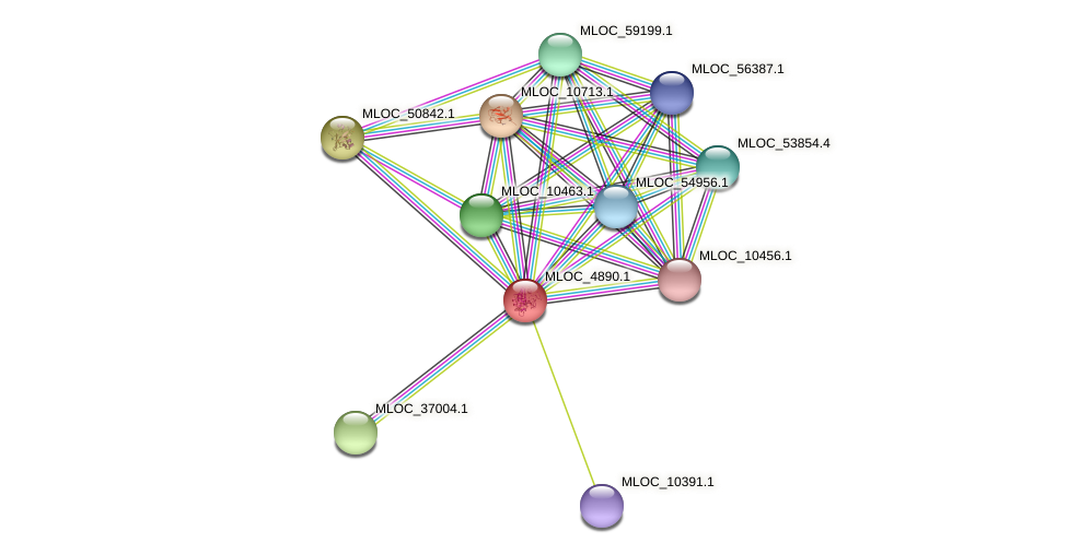 MLOC_4890.1 protein (Hordeum vulgare) - STRING interaction network