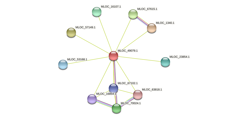 MLOC_49079.1 protein (Hordeum vulgare) - STRING interaction network