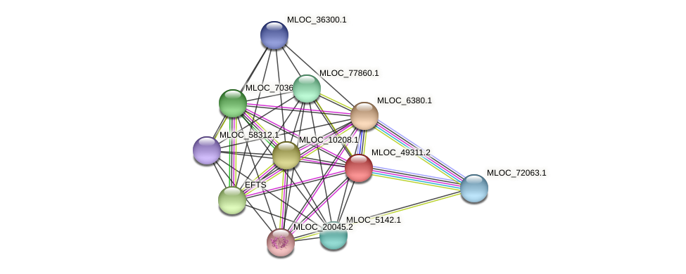 MLOC_49311.2 protein (Hordeum vulgare) - STRING interaction network