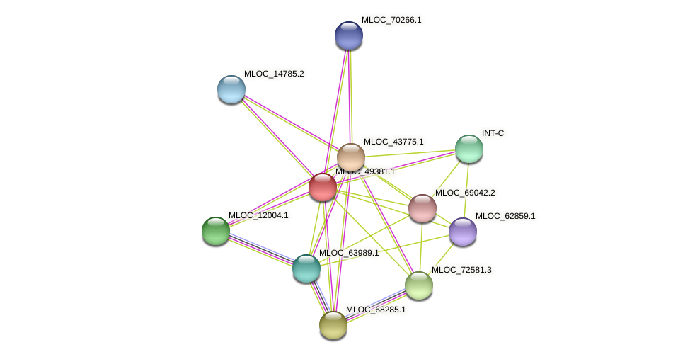 MLOC_49381.1 protein (Hordeum vulgare) - STRING interaction network