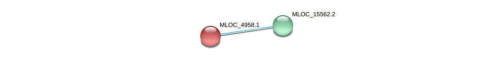 MLOC_4958.1 protein (Hordeum vulgare) - STRING interaction network